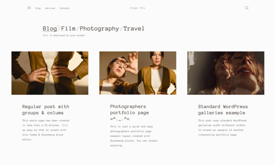 Eisai Pro WordPress theme blog page